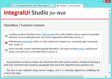 IntegralUI Studio for Web v2.0 adds CheckBox