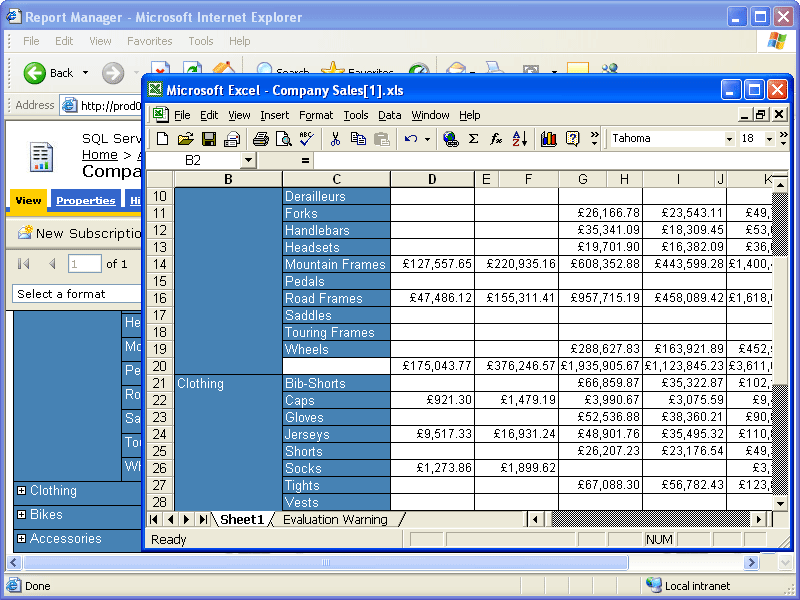 Screenshot of Aspose.Cells for Reporting Services (SSRS)