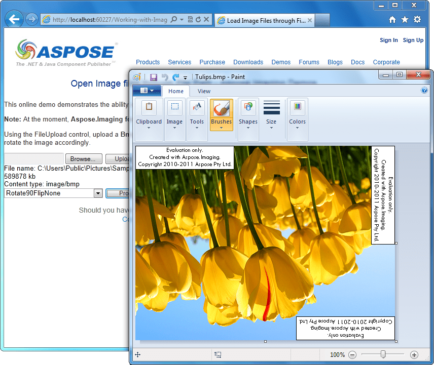 Screenshot of Aspose.Imaging for .NET