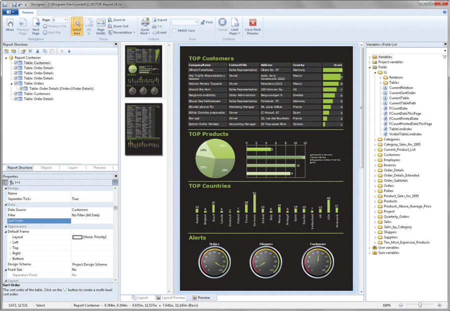 Screenshot of List & Label Professional Reporting Edition