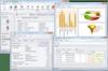 Multiple Window Mode: A Windows Forms Application in a Multiple Window Mode.