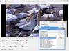 LEADTOOLS Multimedia SDK improves Video processing