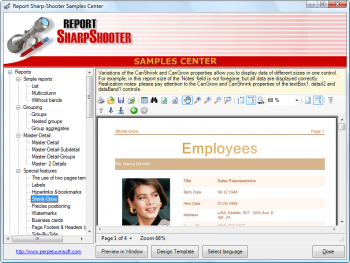 Advert for SharpShooter Reports.Web