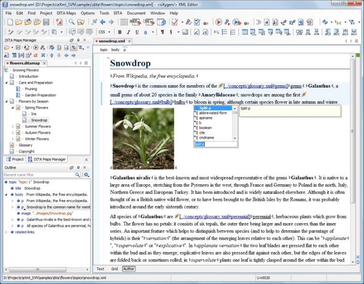 About oXygen XML Editor Enterprise: Cross platform XML editor.