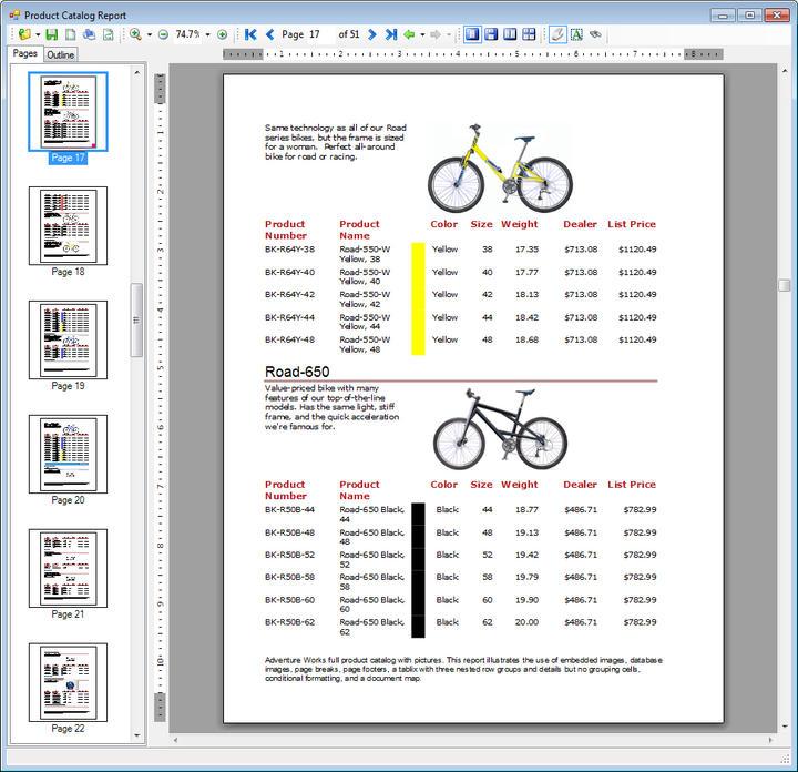 Layout: Report Designer Layout