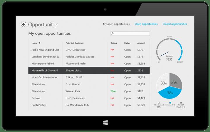 Windows 8 Data Grid Control