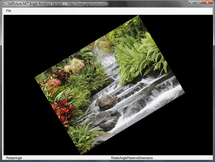 Rotations, Mirror, Flips, Effects, Region of Interest: GdPicture.NET can rotate an image in hundredths of degrees, apply filters and effects (emboss, blur, edge enhance, auto-contrast...), Select a region on an image for processing (Region Of Interest) and more.