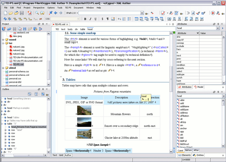Oxygen XML Author: The oXygen XML Author keeps only the relevant authoring features of oXygen XML Editor enhancing the authors productivity by providing a clean and easy to use interface specially suited for content authors.